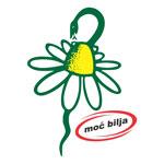 Logo-kamilica